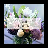 Сезонные цветы Киев